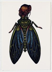 Emergent Cicada Woman, 2013, linocut, hand coloured, 22 x 18.5 cm